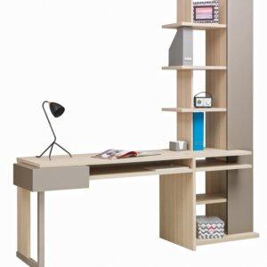Письменные столы со стеллажом